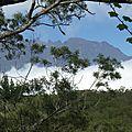Un Calimero à la Réunion