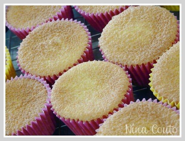 cupcakes nimes vanille 1g