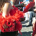 Mon truc en plumes au <b>carnaval</b> de <b>Nantes</b> le 12 avril 2015 (1)