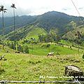 colombie 1-2013-18-fév-salento-manizales 028