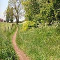 31 - Sentier du Tripan