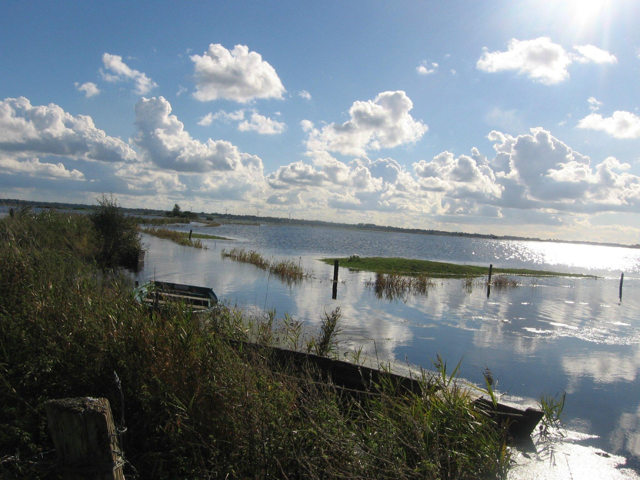 Le marais du Pommier Houesville 14 octobre 2012 016