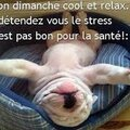 relax cool stress