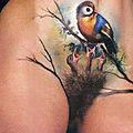 un <b>oiseau</b> dans son nid