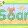 Carton-mousse Soan