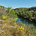 Balade sur les bords de l'Ardèche ( Ruoms Avril 2015 )