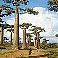 Le pays de Madagascar