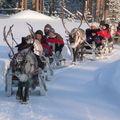 balade en traineaux tirés par des rennes