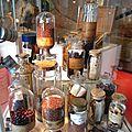 autour du Cacao galerie botanique Marimerveille