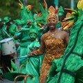 Parade du littoral- la forêt-