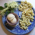 Recettes sauvages
