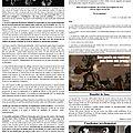 Bulletin théorico-informationnel du comité a.e.c. - n°01