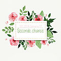 Throwback thursday #39: seconde chance