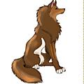chronique du fox