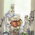 Les lapins
