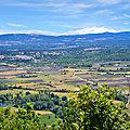 Sault en Provence : le royaume de la <b>lavande</b>