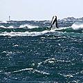 Vers les Îles Sperdutu , grosse Tramuntana d'Hiver...