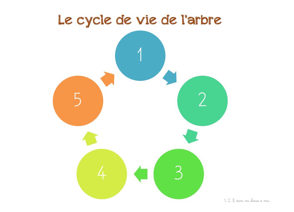 Windows-Live-Writer/Projet-Mon-ami-larbre_90D5/image_22
