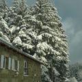 2008 12 12 Une maison, des sapins enneigés