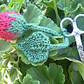fraise tricot