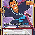 Ninja Violet - Dragon Ball Personnages