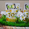 [N.A!] NATURE ADDICTS FÊTE SES 10 ANS ! [#<b>SNACKING</b> #NATUREADDICTS]