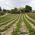 Sous le ciel de Provence,