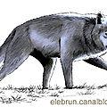 Loup prehistoire