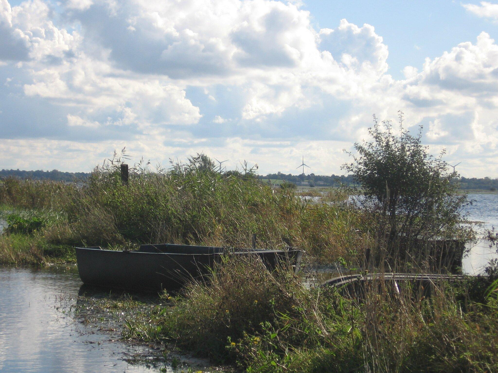 Le marais du Pommier Houesville 14 octobre 2012 010