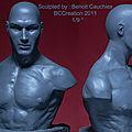 Nouvelle référence : un buste anatomique masculin
