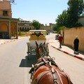 Caléches Meknes