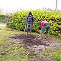 17 12 2011 Plantation au rucher