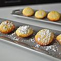 Déclinaison de madeleines selon martha stewart