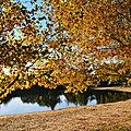 Lac des Salettes à Mormoiron : couleurs d'automne