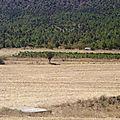 turquie : le paysage s'asséche