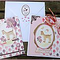 Two birth cards for 'Take it Make it' <b>challenge</b> 7 / Deux cartes de naissance