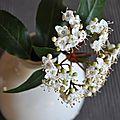 Bouquets de mars
