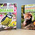 L'indispensable guide des <b>oiseaux</b> / des empreintes animales (Belin)