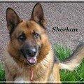 Sherkan