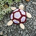 Ma petite tortue à moi