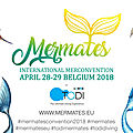 Mermates: international merconvention les 28 et 29 avril 2019 en belgique