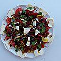 tomates mozzarelle olives noirees et basilic