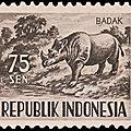 INDONESIE - Le <b>Rhinocéros</b> de Java en convalescence