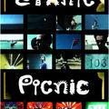 Ethnic picnic