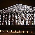 JR - Projection Assemblée Nationale_5