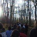 Montée vers la forêt 2