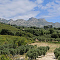 Sur les sentiers des Alpilles