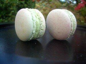 macarons__Le_bec__pain_095