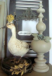 Roi des canards