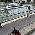 Paris plag